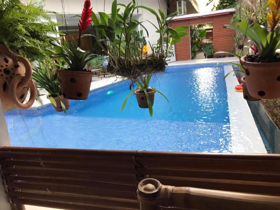 ecologe piscine2