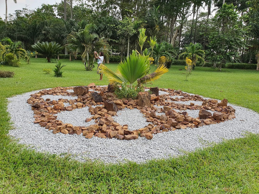 Jardin botanique Bingerville - Pelouse